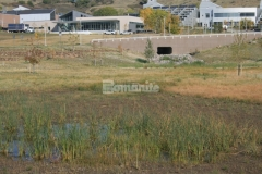 Featured here is Bomanite Grasscrete partially concealed concrete that was installed at this site to minimize drainage issues and reduce site runoff while preserving the natural landscape.